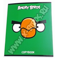 Тетрадь общая Angry Birds 48л