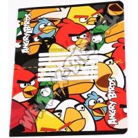 Тетрадь Angry Birds 12л
